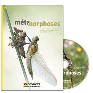 DVD_Metamorphose